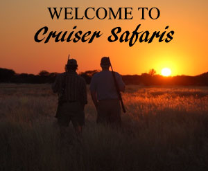 Welcome to Cruiser Safaris