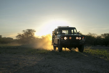 Cruiser Safaris hunting vehicle.