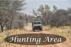 Link to hunting area photos