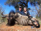 Blue Wildebeest taken by a bow hunter at Cruiser Safaris.
